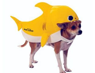 Baby Shark costume for dogs or other pets, yellow cartoon shark.