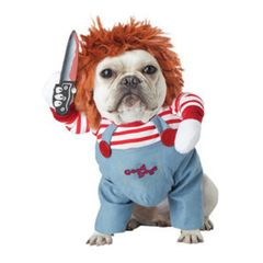 dog pet costume blue overalls, striped shirt, and orange wig, deadly doll chucky.