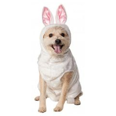 white bunny suit with hood and ears for dogs or other pets.