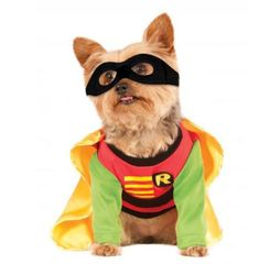 Perfect side kick Robin costume for dogs or other pets, shirt with logo, yellow cape, and black mask