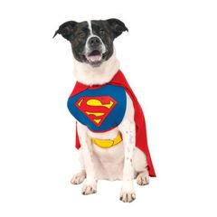 Superman costume for dogs or other pets, red cape, and bib with Superman logo on chest.