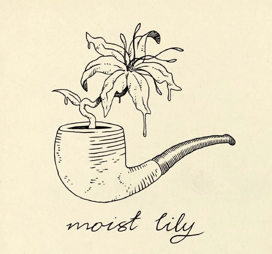 Moist Lily podcast cover image