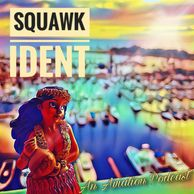 Squawk Ident podcast