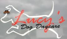 Lucy's Dog Daycare