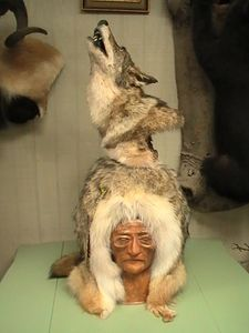 Howling coyote on pedestal base