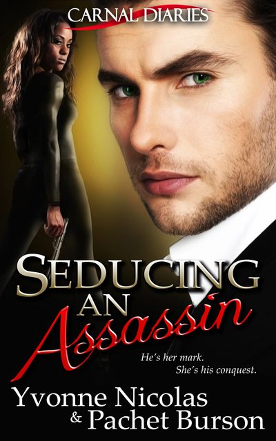 Seducing An Assassin, Carnal Diaries, Erotic Romance, Interracial Romance, Mystery