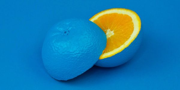 Blue orange showing that diversity includes some characteristics that are not externally observable