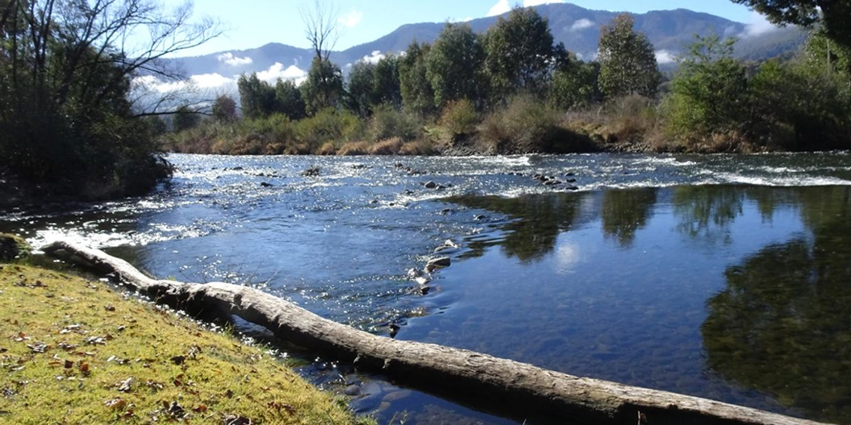 Mt Beauty Summit Views - Kiewa river in Spring time