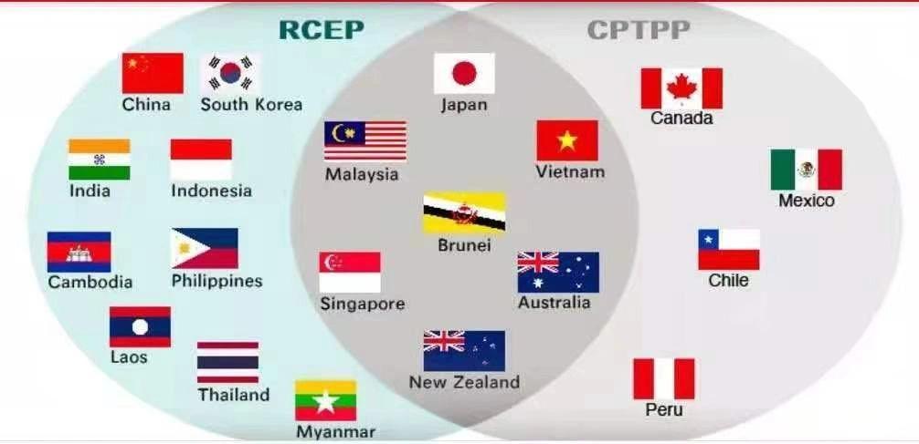 赵全胜:进可攻退可守――从RCEP到CPTPP