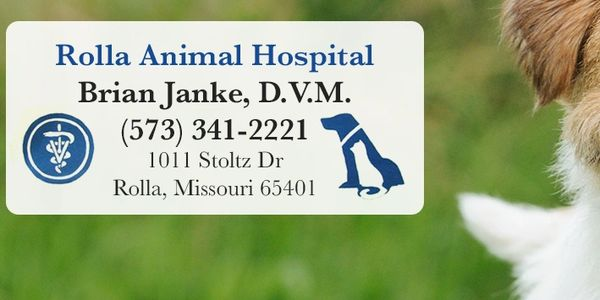 Dr. Janke Veterinarian Dr. Janke grew up on a dairy farm in Kansas. He graduated from Kansas State U