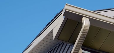 Gutters, soffit and downspouts.