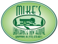 Mike's Landscaping & Snow Removal