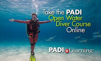 PADI Open Water Diver Course Online
