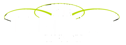 The Linked Church