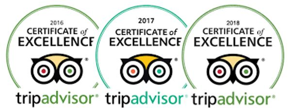 Certificate of Excellence Pevensey Motor Lodge Echuca