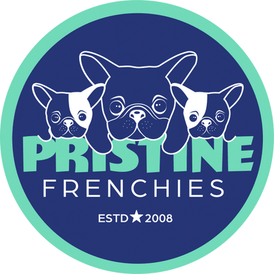 Pristine Frenchies