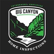 Big canyon home inspections