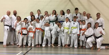 Turner Valley Karate Grading Jan 31, 2019