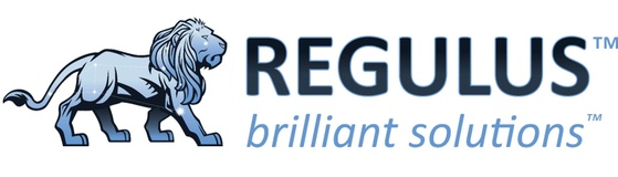 Regulus Solutions Inc.
