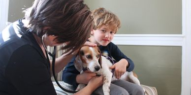 Dr Shannon Burroughs Raleigh Banfield Creedmoor Veterinarian - Raleigh Mobile Veterinarian