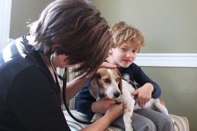 Mobile Vet Services in Raleigh - Dr. Shann Burroughs