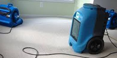 MD Restoration Ozone Dehumidifier air scrubber Rental  picture