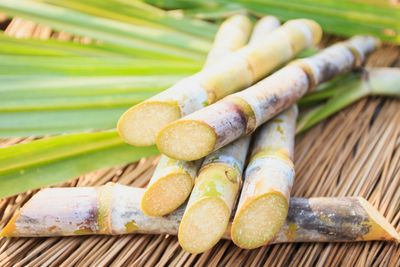 Image of sugarcane in its raw form