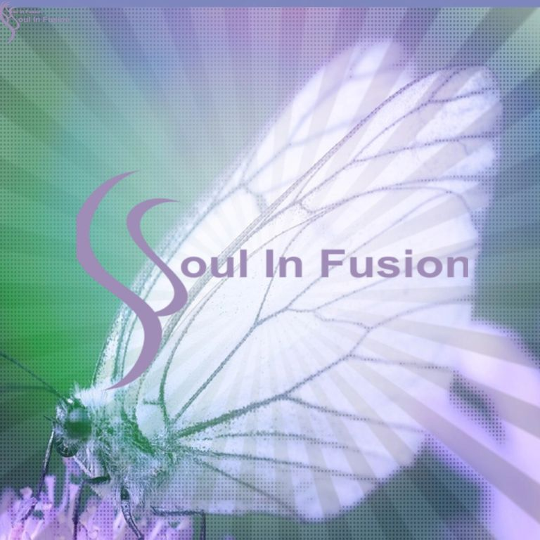 White wings of a butterfly against a green background with the words Soul In Fusion written across
