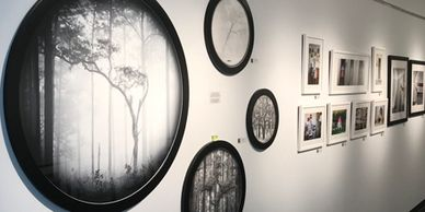 A photograph of David Monroe's art hanging in a gallery