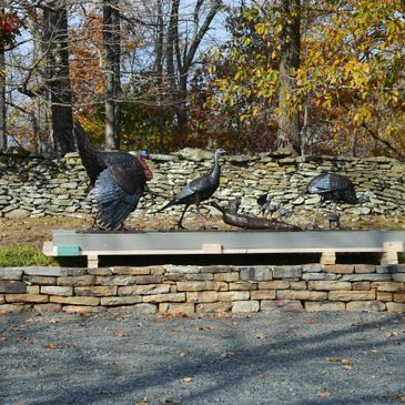 """Wild Turkeys"" Located in a beautiful setting in rural Virginia."