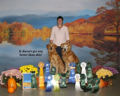 Award Winning Dog Trainers in New Jersey