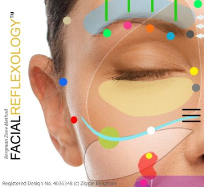 A portion of  the Bergman Zone Method facial reflexology chart
