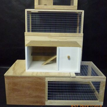 Locally made Guinea Pig Cages and Small Animal Enclosures