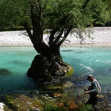 Fishing on Soca River