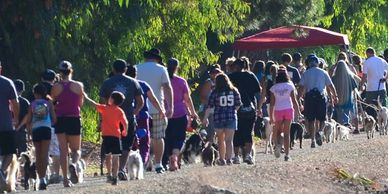 Wag 'n Walk Simi Valley walkers