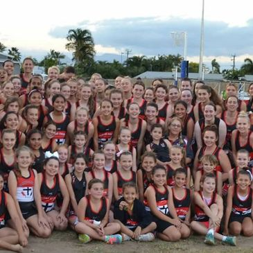 Link to the Netball page