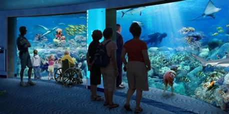 Baltimore Aquarium, scuba diving, aquarium diver