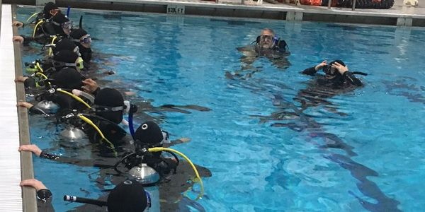 class of scuba divers in certification class pool session