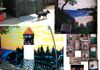 Some of the Murals I've done.