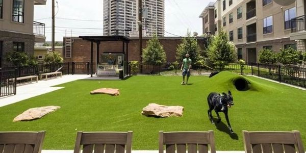 Commercial services. Dog parks and service pet waste stations
