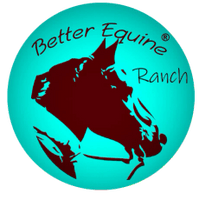 Better Equine Ranch