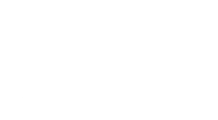 The Training Project