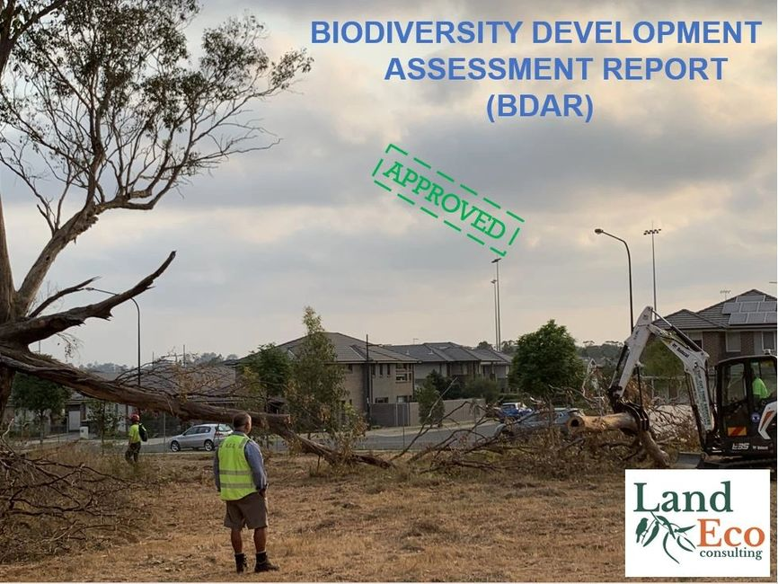 Biodiversity Development Assessment Report (BDAR) Sydney & New South Wales Land Eco COnsulting