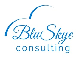 BluSkye Consulting