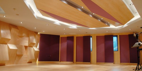 The featured wall acts not only to diffuse sound but promotes the flexibility of the room. Complimen