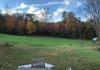 View from the patio of autumn colors beyond our hay field
