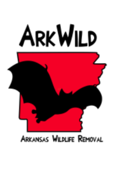Arkansas Wildlife Removal