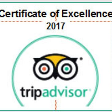 2017 Trip Advisor Badge of Excellence