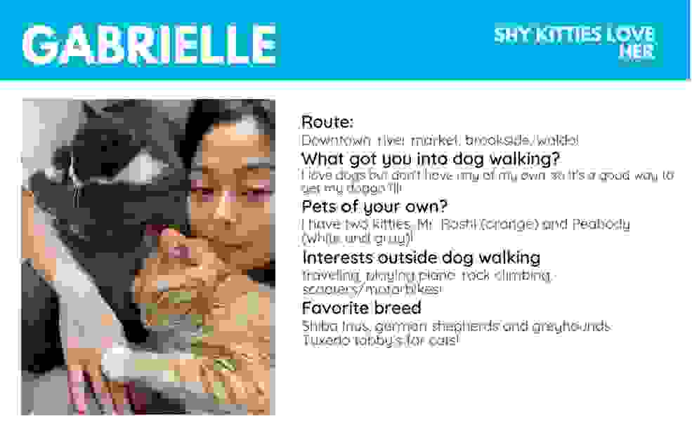 reliable dependable dog walking pet sitting licensed