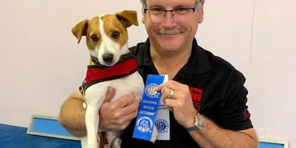 Good Manners 3/ Canine Good Citizen your dog will be tested and will receive their cgc title